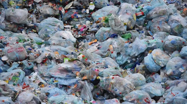 Pacific Island the Most Plastic-polluted Place on Earth