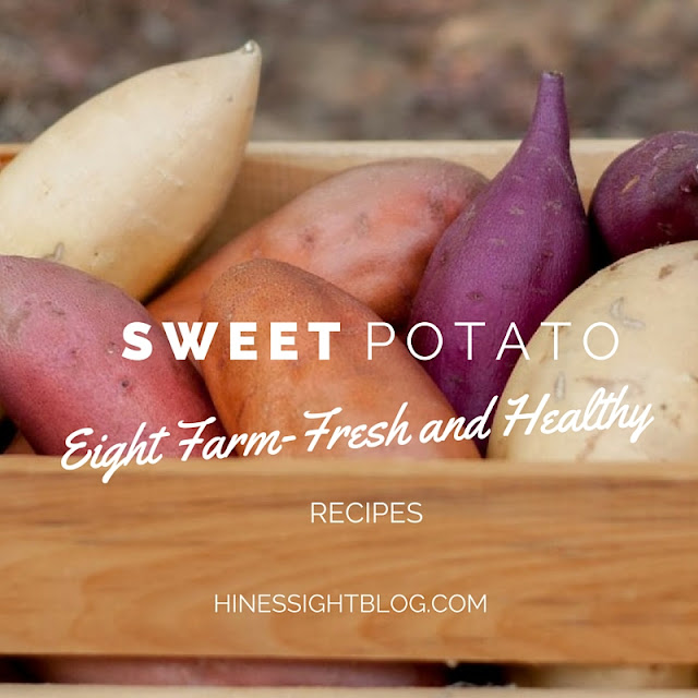 N.C is the largest producer of sweet potatoes. Enjoy eight farm-fresh and healthy recipes using the root vegetable as a starring ingredient.
