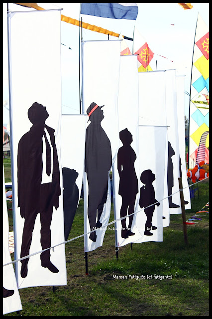 festival de l'air fréjus 2015