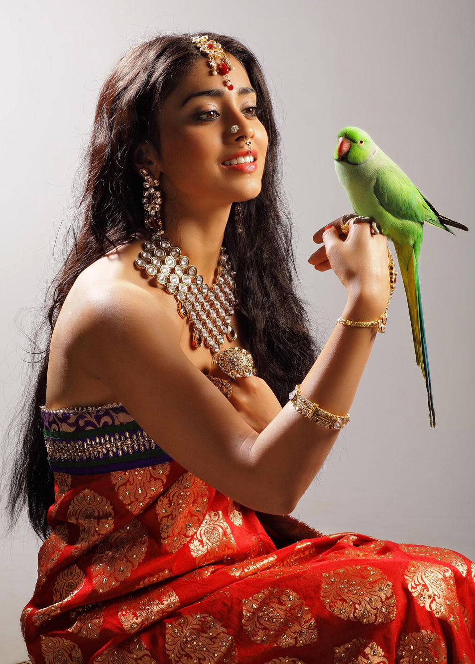 Way2Actressin Shriya In Sexy Saree Hot Looks Photo Gallery-8470