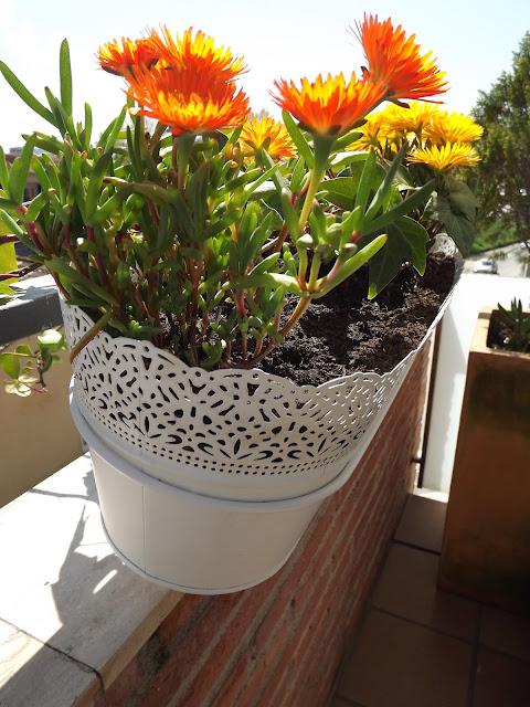 mis jardineras de ikea