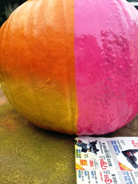 Budget Fairy Tale: DIY Sally Painted Pumpkin