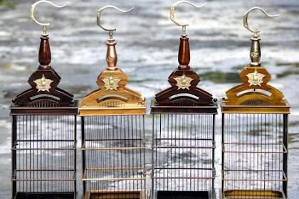 Cara Memilih dan Mengecat Kandang Burung yang Benar