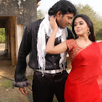 Allari Naresh,Poorna in Seema Tapakay Telugu Movie Stills