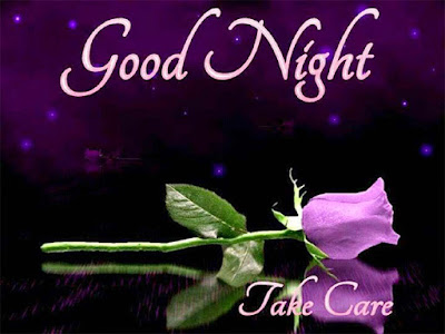 i-wish-you-a-good-night-with-purple-rose