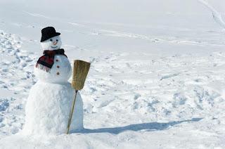 sneeuw op het gazon