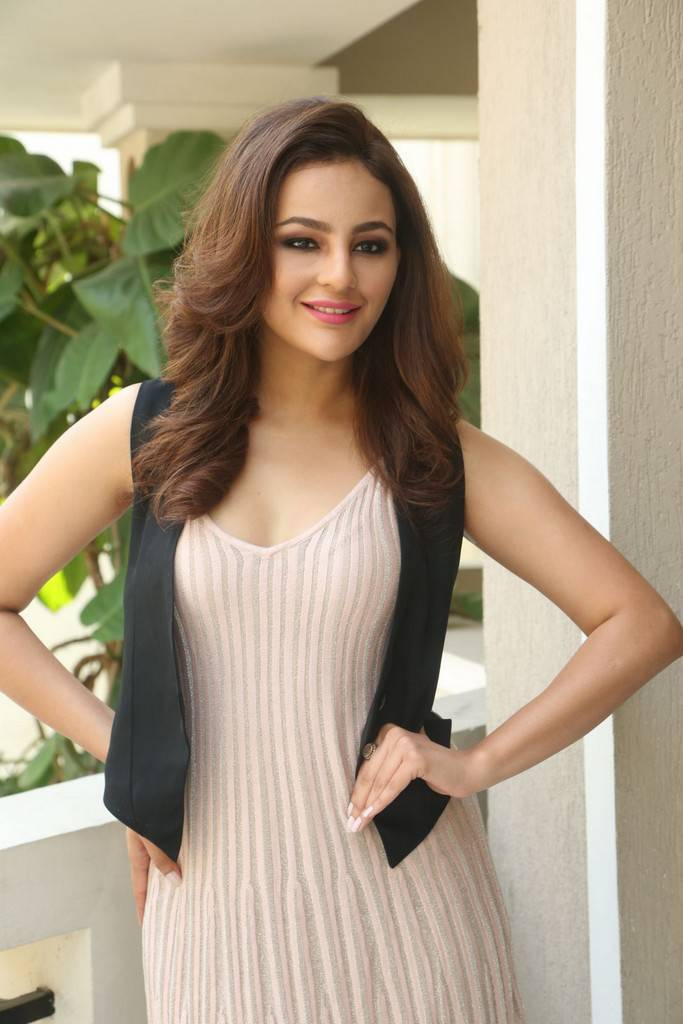 Desi Actress Pictures Seerat Kapoor Stills At Touch Chesi -5215