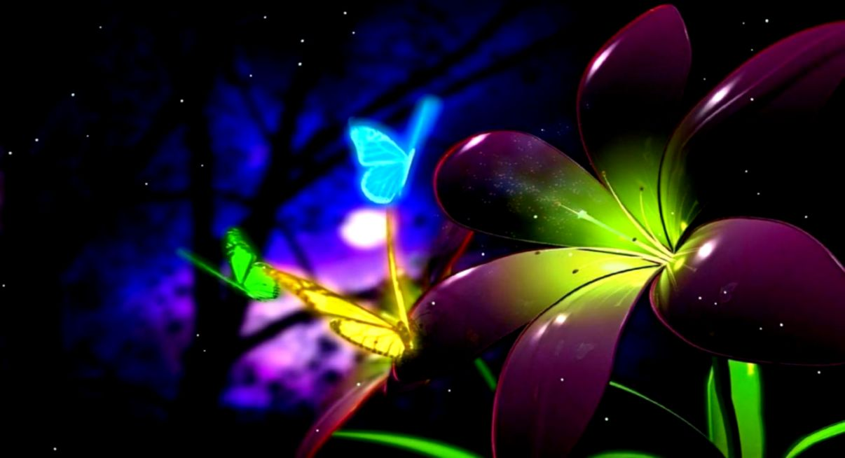 Butterfly Screensavers Free Funny Screensavers
