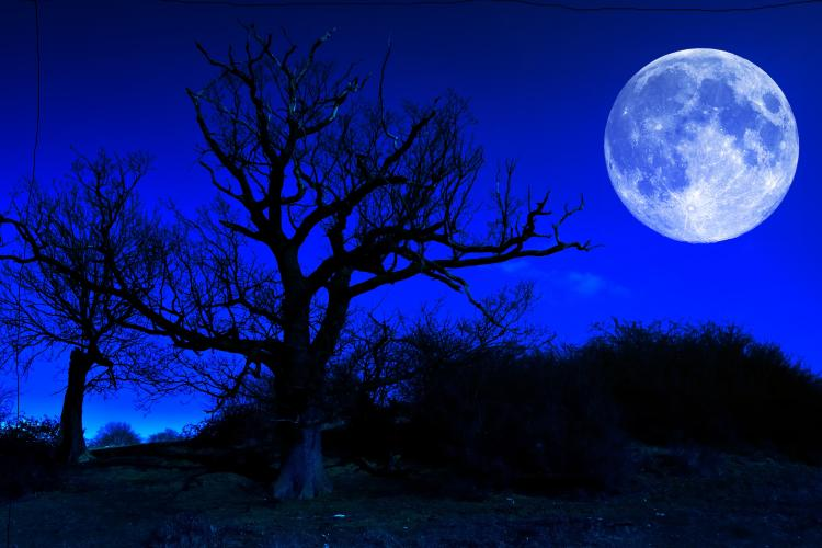 moon apns alternative