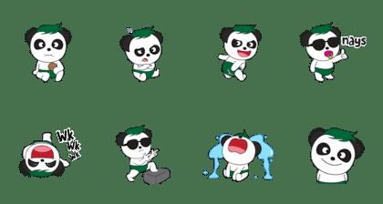 Baby Pandaskee