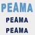 Equipe de corrida do Peama participa de corrida neste domingo
