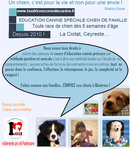 Classes Chiot la Ciotat