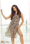 Sanjana Glamours Stills-thumbnail-3