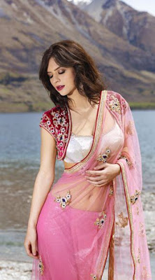 Beautiful Indian Model Girl In Stylish Saree Blouse With Bolero Jacket.