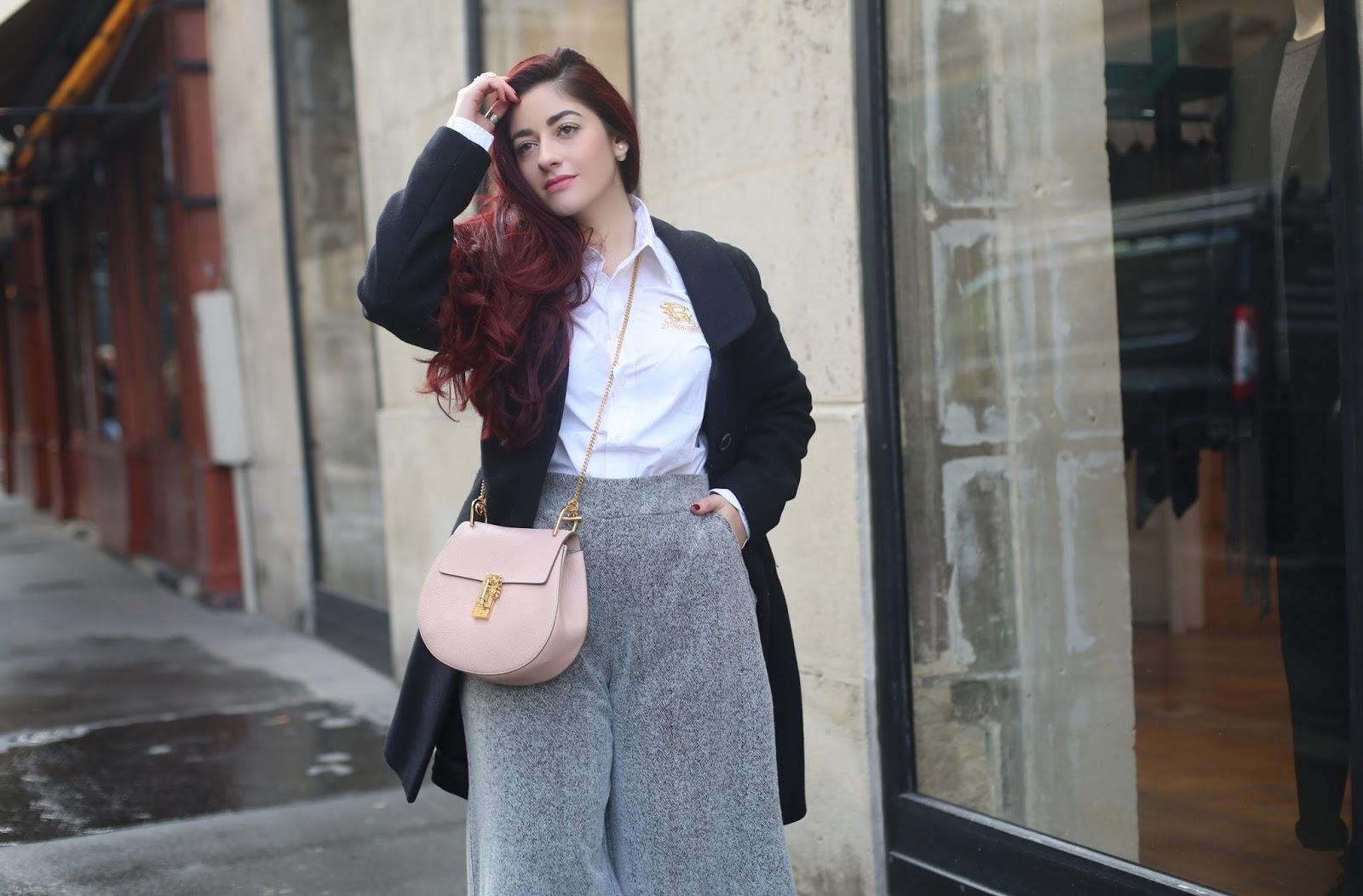 blog mode paris venus is naive