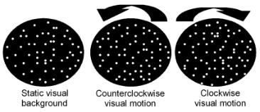 図:自覚的視性垂直位