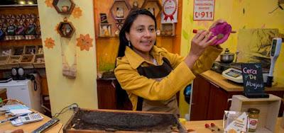 Ecuador se familiariza con las bondades de las abejas 13
