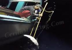 Mancing Strike Ikan Tuna Mantap