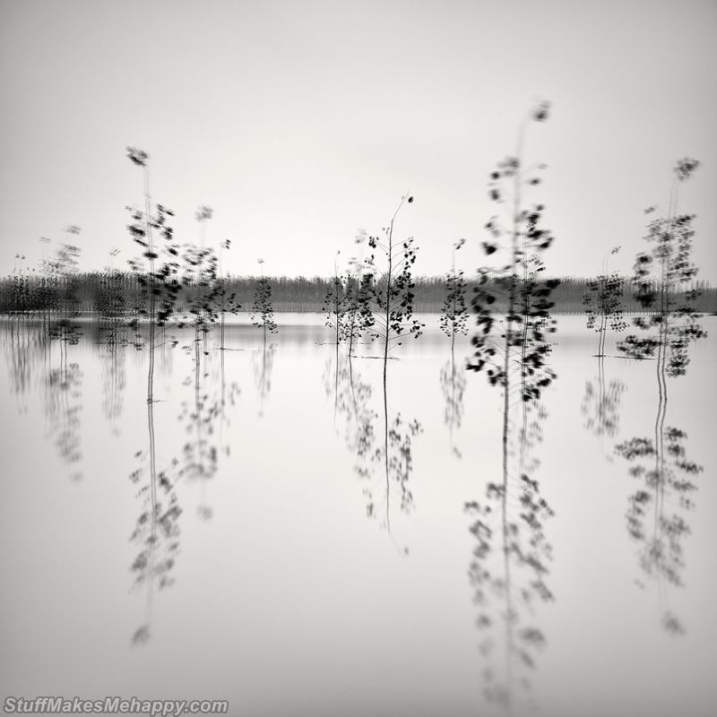 Delightful Black and White Landscape Pictures by Pierre Pellegrini