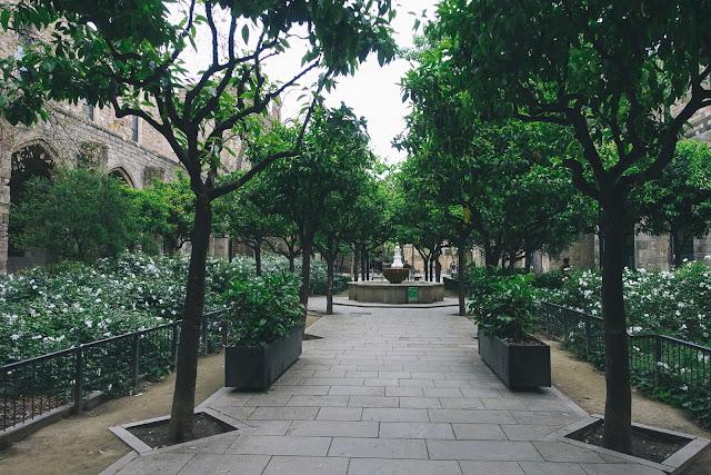 ルビオ・イ・ルッチ公園(Jardins de Rubió i Lluch)