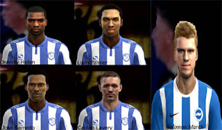 Mini Facepack Sheffield Wednesday Pes 2013