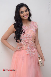 Actress Neha Hinge Stills in Pink Long Dress at Srivalli Teaser Launch  0028.JPG