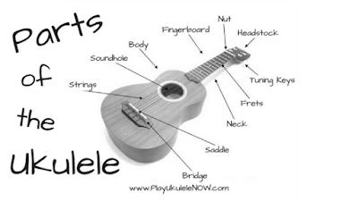 Anatomy of the uke: Parts of the ukulele