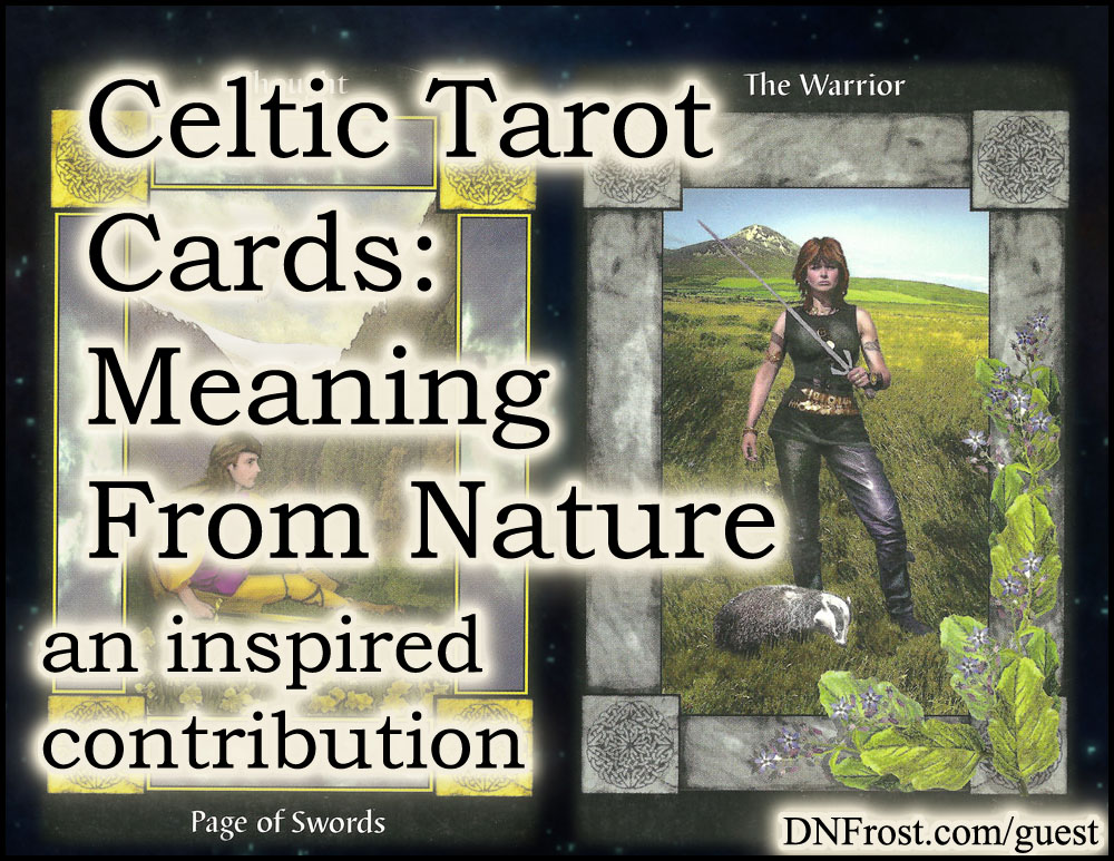 Celtic Tarot Cards, Meaning from Nature: symbols of the ancient Celts http://www.dnfrost.com/2017/03/celtic-tarot-cards-meaning-from-nature.html An inspired contribution by D.N.Frost @DNFrost13 Part 4 of a series.