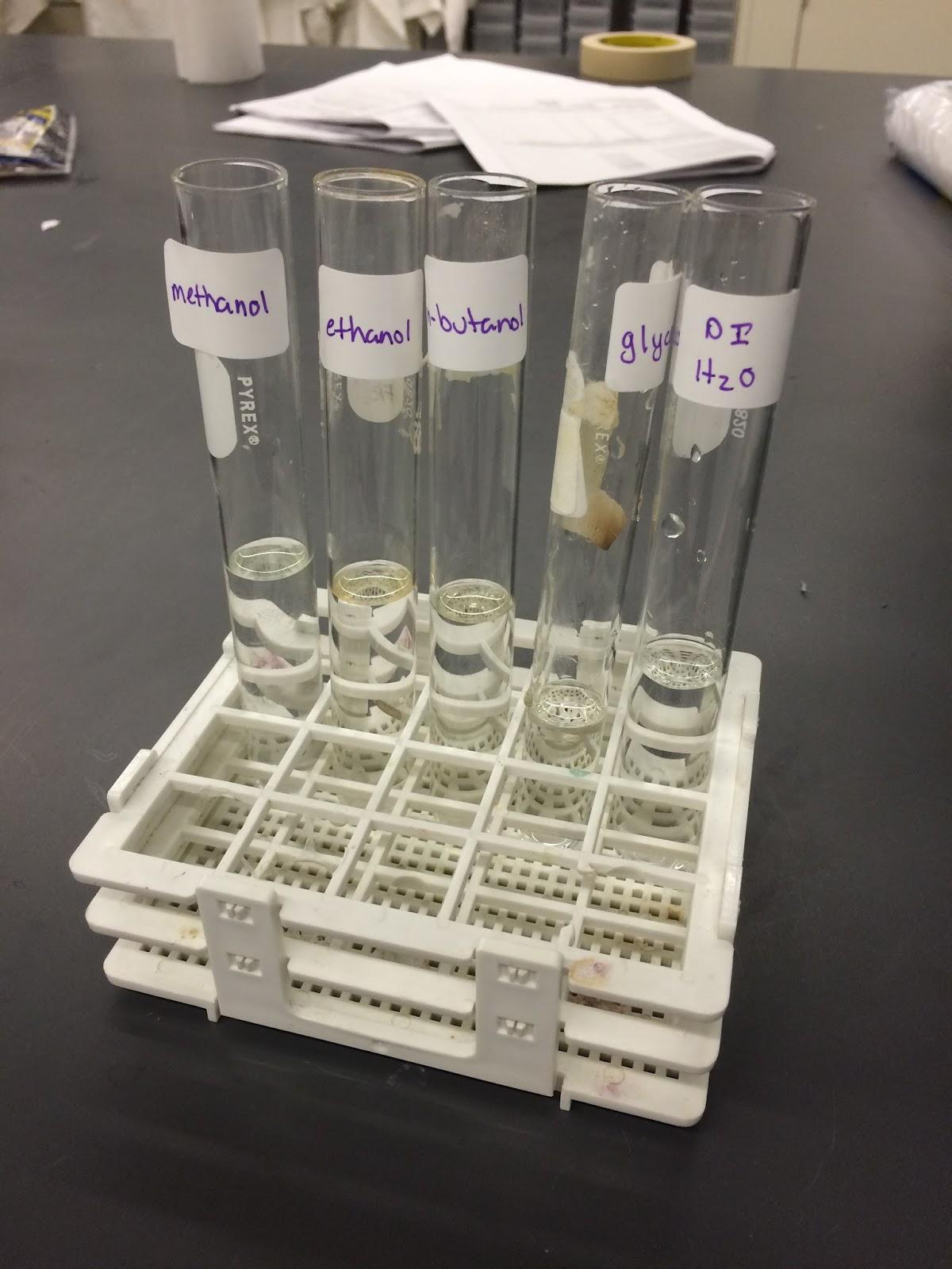 Megan S Chemistry Lab Blog Lab 10 Evaporation And