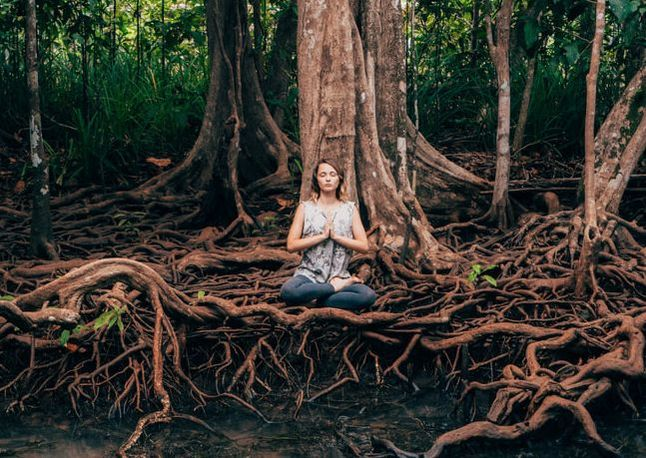 Im Your Trip: Yoga Retreat Helps to Achieve Mental Peace