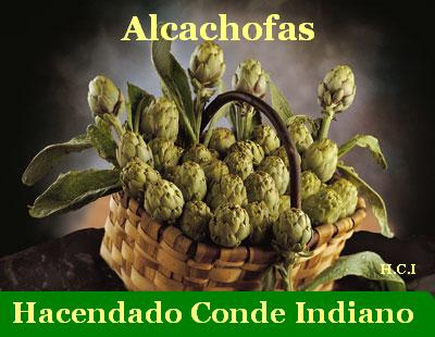 dietas para personas con acido urico alto causas de alteracion de los niveles de acido urico en sangre como combatir el ataque de acido urico