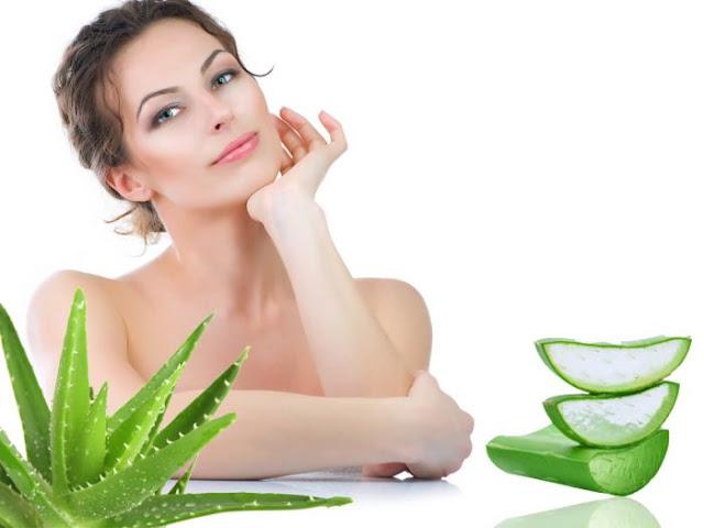 البشرة الدهنية وعلاجها بالأعشاب