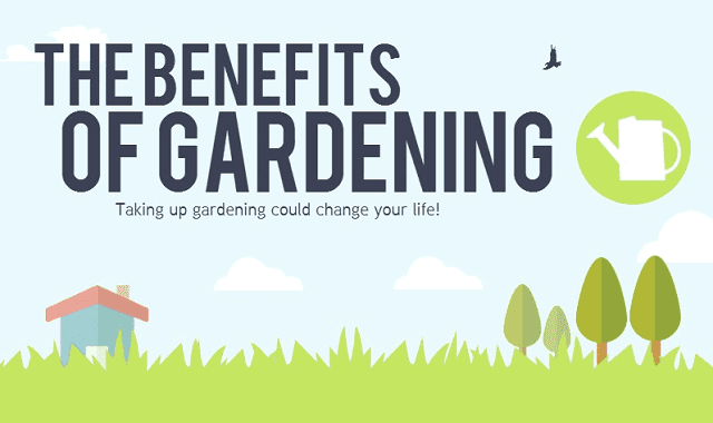 Image: The Benefits of Gardening