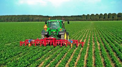 Prodi TPHP- Teknologi pengolahan hasil Perkebunan