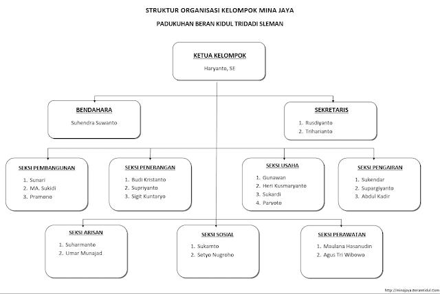 Struktur organisasi mina jaya