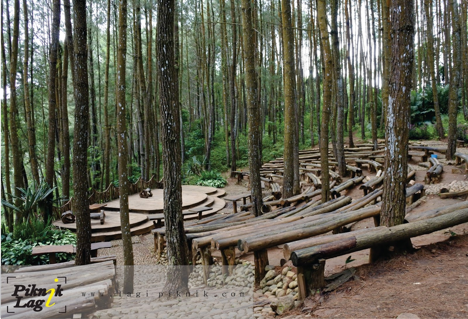 Hutan Pinus Imogiri | PIKNIK LAGI