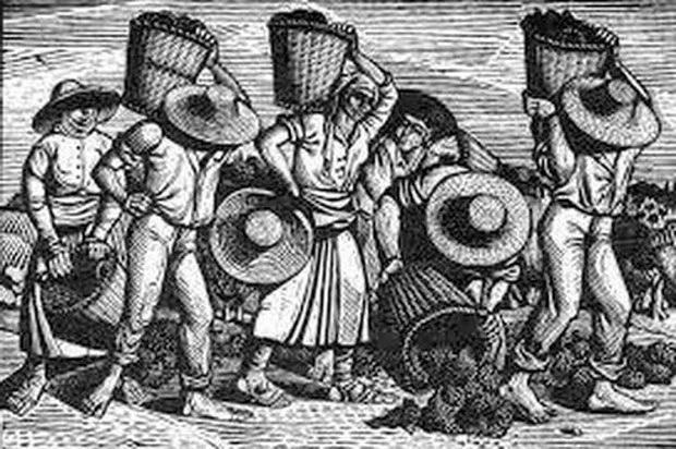 Οι αμπελουργοί θα γιορτάσουν στο Σουφλί τον Άγιο Τρύφωνα