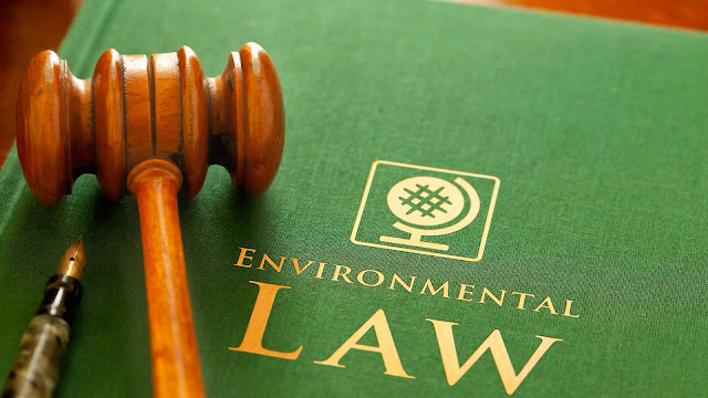 5 Best Environmental Law colleges in India