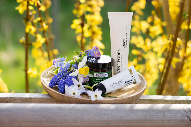 Moisturiser, salve and face mask with yellow flowers behind