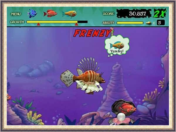 Download Feeding Frenzy apk
