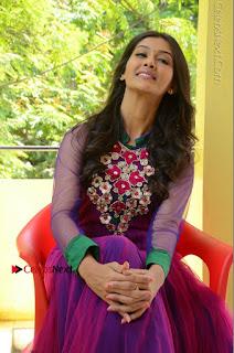 Actress Pooja Jhaveri Latest Stills in Purple Salwar Kameezt at Dwaraka Success Meet  0186.JPG