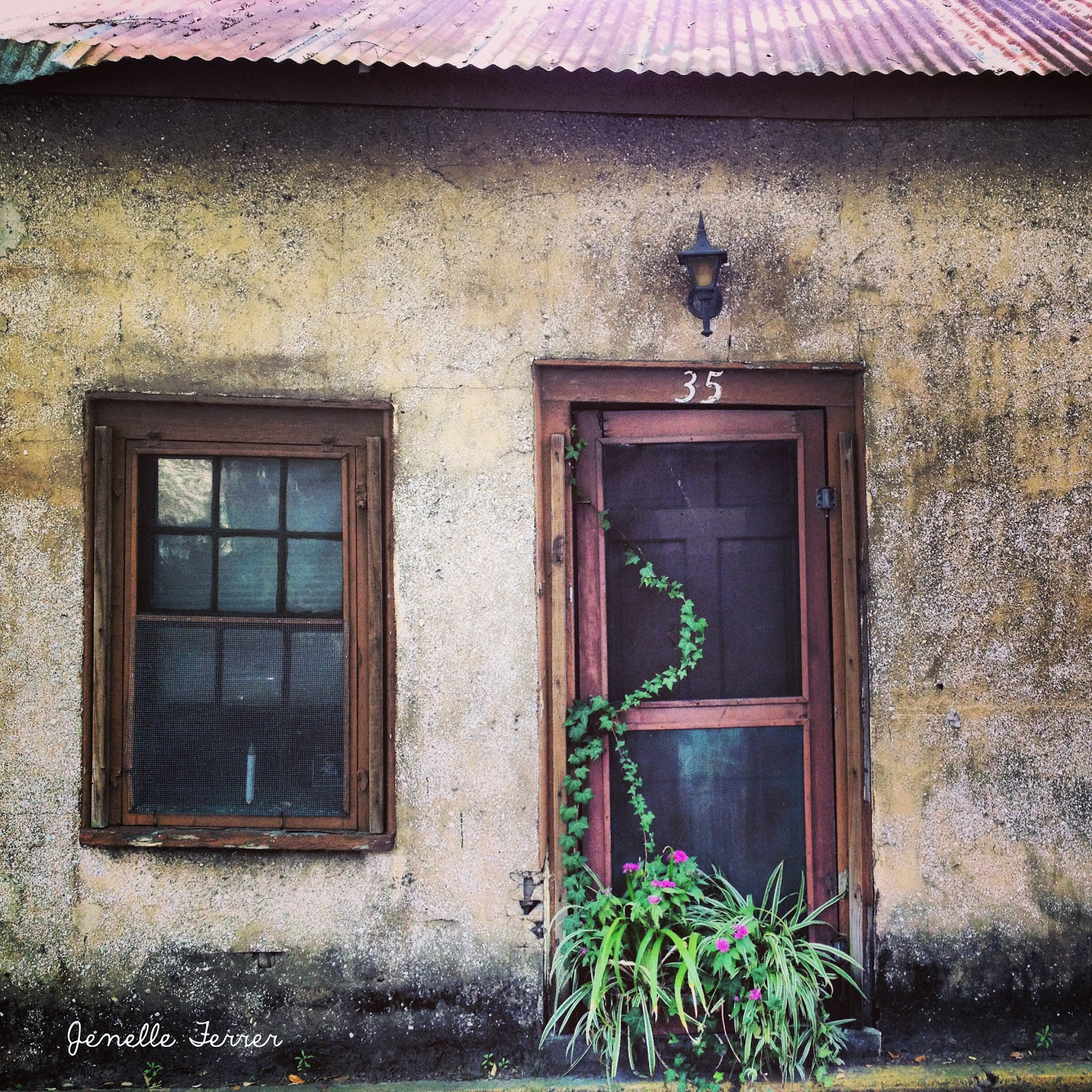 Doors and windows | Jenelle's Photography