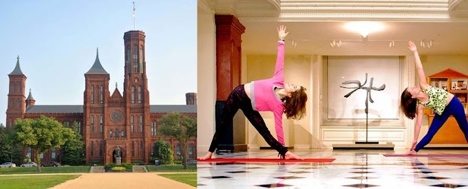 Yoga in Smithsonian: Hindus urge all US museums to hold yoga sessions