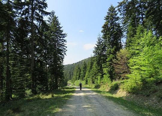Zejście do doliny Białej.