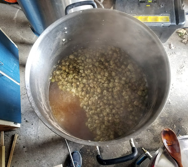 Aged homegrown Cascade hops in the boil.