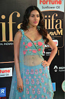 Amyra Dastur in Flower Print Choli Transparent Chunni at IIFA Utsavam Awards 12.JPG