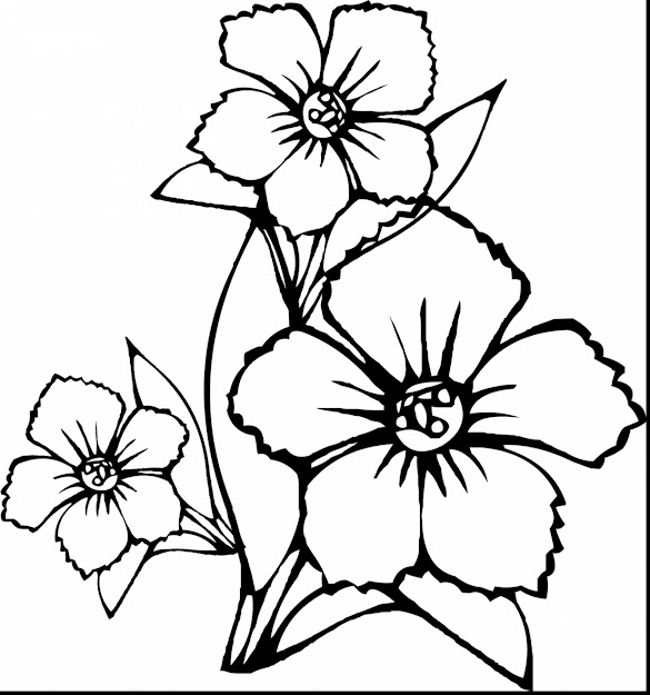 Astounding How To Draw Flower Coloring Page With Coloring Pages Of Flowers  And Coloring Pages Of