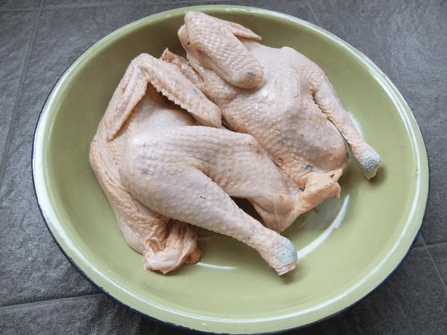 Daging ayam, salah satu makanan berprotein tinggi