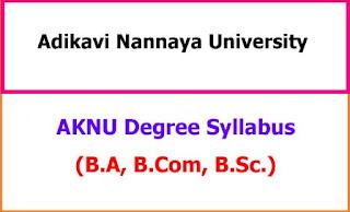 AKNU Degree Syllabus