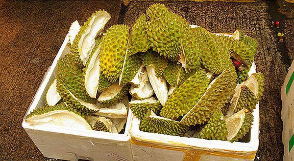 Manfaat Luar Biasa Kulit Buah Durian